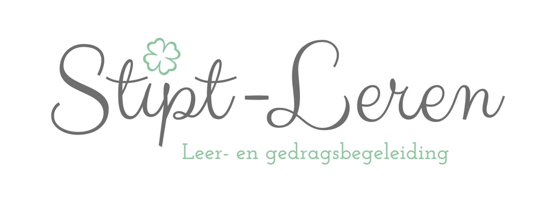 Stipt-Leren